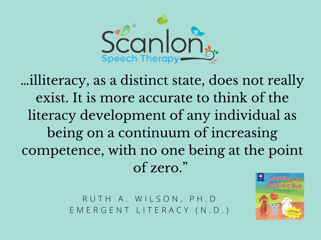 """""""…illiteracy, as a distinct state, does"""