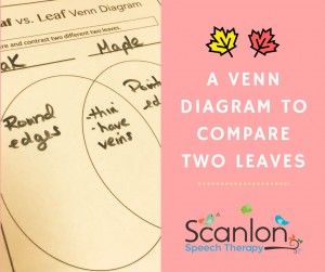 A Venn Diagram To Compare Two Leaves