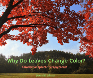 Why Do Leaves Change Color
